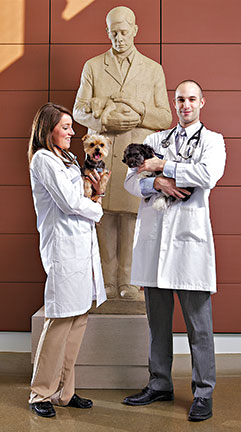 Gentle Doctor with Vet Students