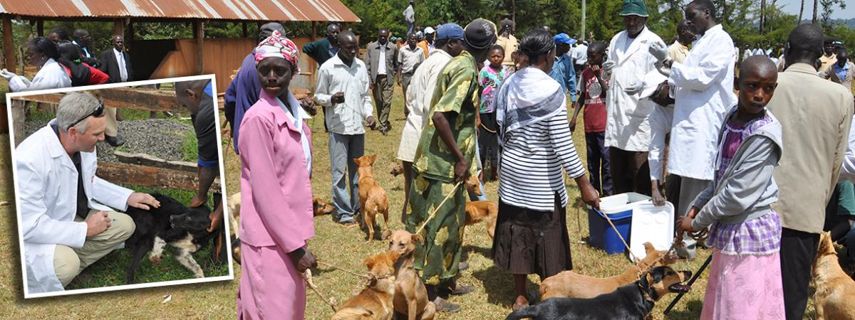 Canine vaccination in Kenya
