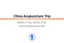 China Acupuncture Trip Slideshow as PDF