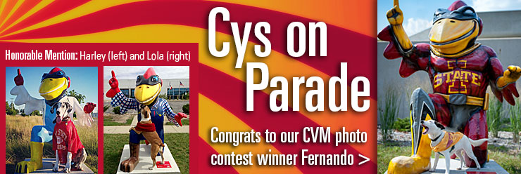 CVM Pet Photo Contest