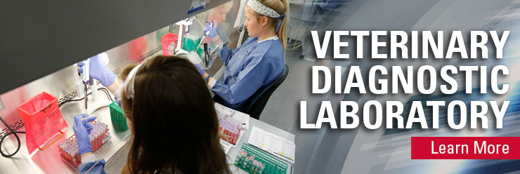 Veterinary Diagnostic Laboratory
