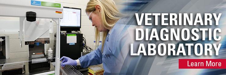 Veterinary Diagnostic Laboratory