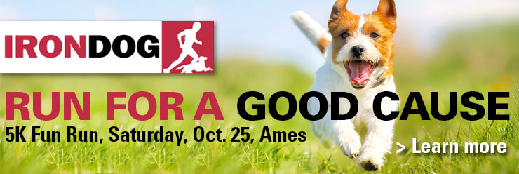 IronDog 5K fun run with your dog