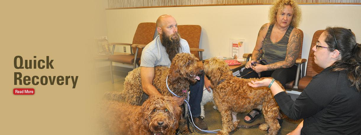 dogs with owners and clinician in waiting room