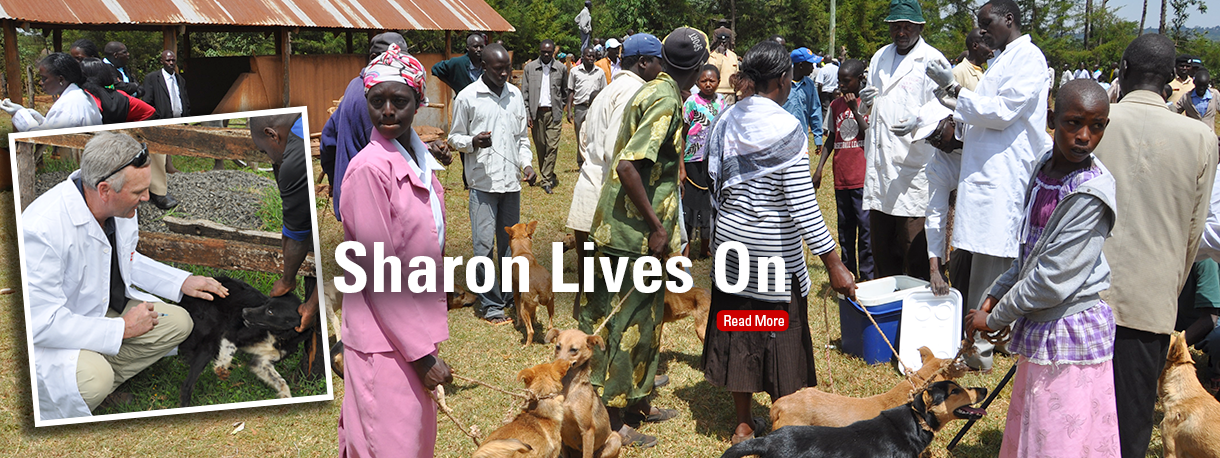 Canine rabies vaccination in Kenya