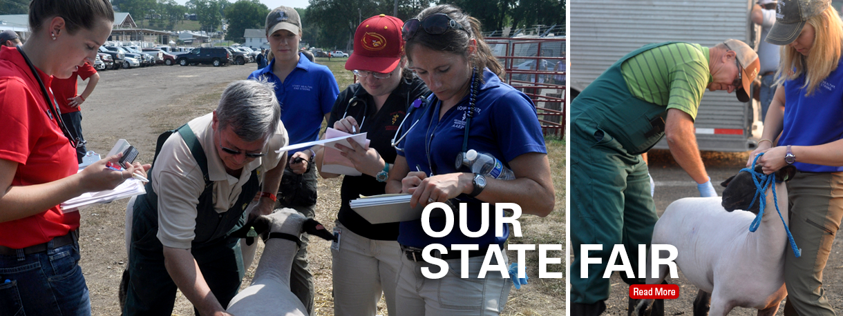 State Fair Veterinarians