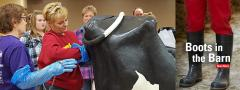 Participants examining a life-size cow model