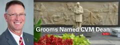 Dr. Dan Grooms