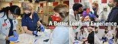 Junior surgery students examining cats