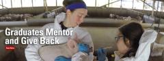 SVIP mentor with intern giving pig nasal swab