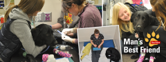 Sheba the dog being treated in ICU and with owner